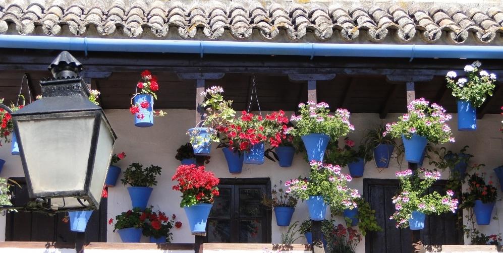Flower-Laden_Patio_-_Cordoba,_Spain